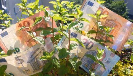 Nachhaltiges Geld - Foto © Gerhard Hofmann, Agentur Zukunft für Solarify